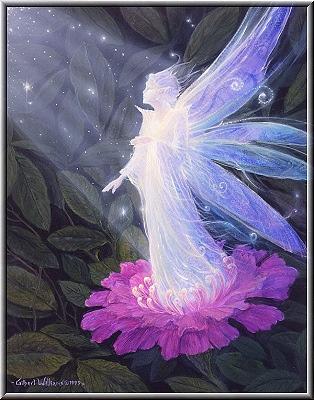 Resultado de imagem para ángel de las plantas