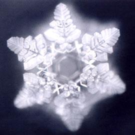 wpid-Crystal-namaste-2011-08-26-17-44.jpg